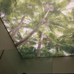 plafond de douche imprimé rétroéclairé