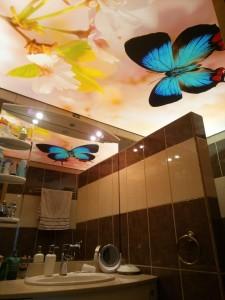 plafond tendu imprimé papillon